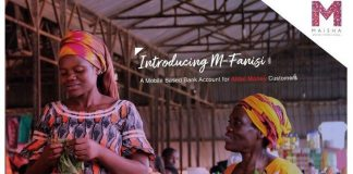 How to get a loan from Airtel using the M-Fanisi Service.