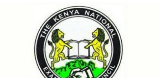 How to check your KCPE RESULTS 2019